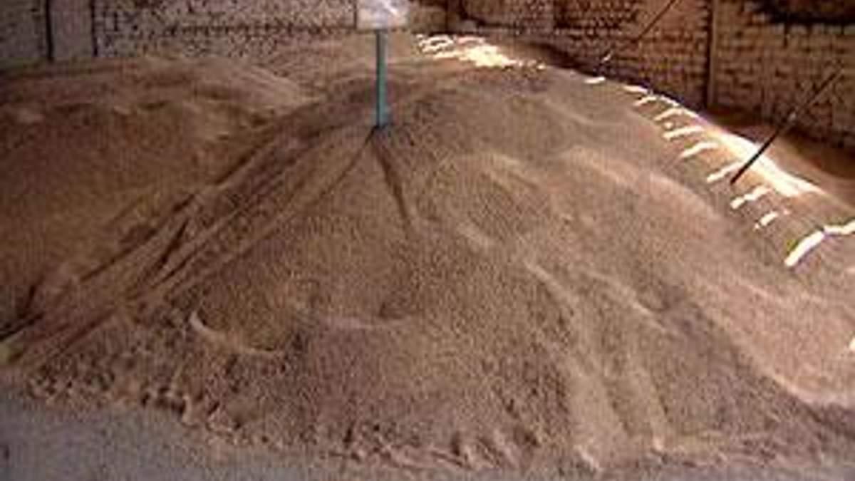 МінАП знизило прогноз експорту зерна на 12%