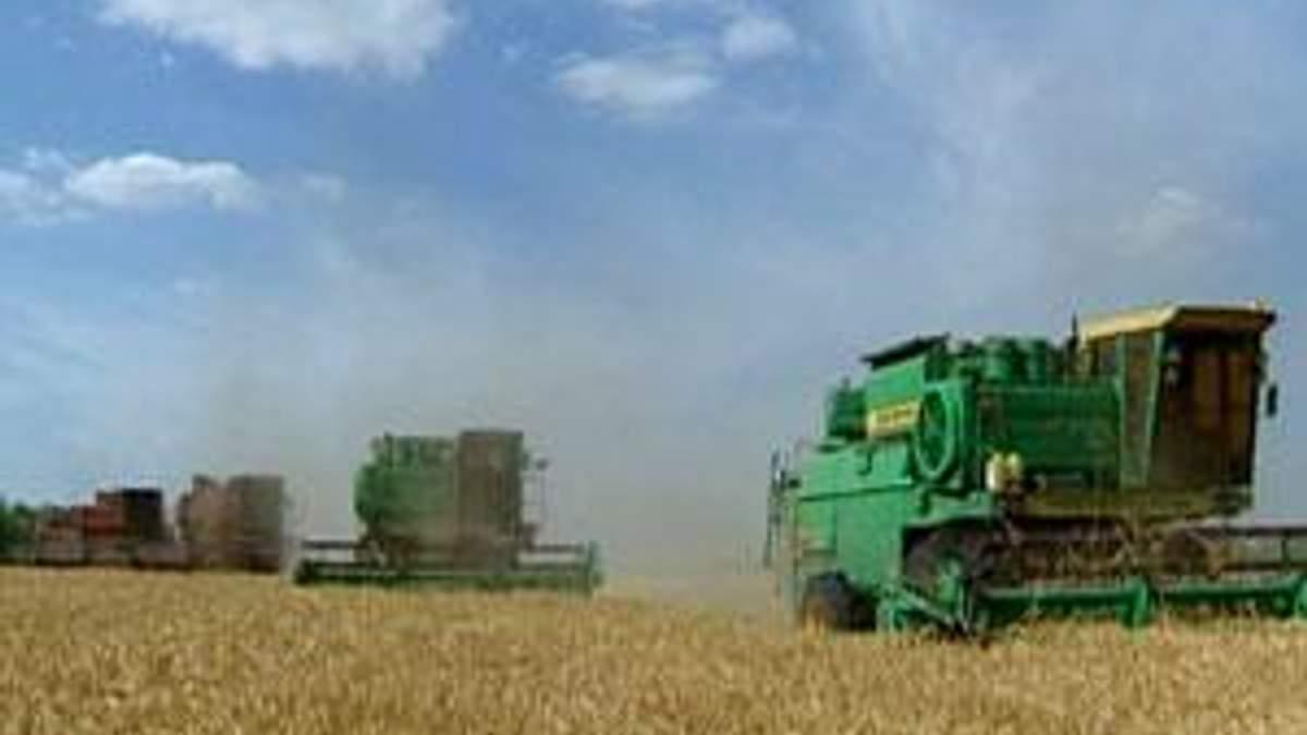 Експерти: Пшениця у 2012 році буде дешевшою за кукурудзу
