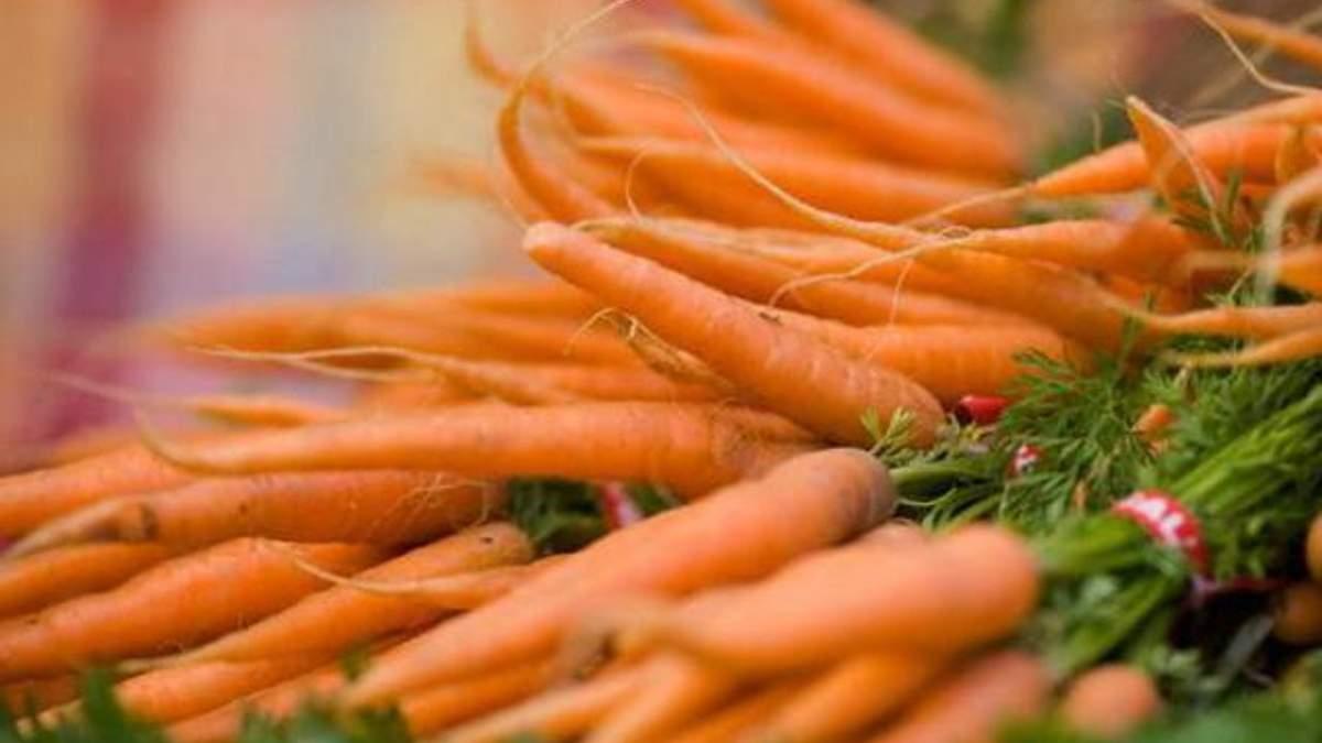 Украина стала лидером по выращиванию моркови в Европе