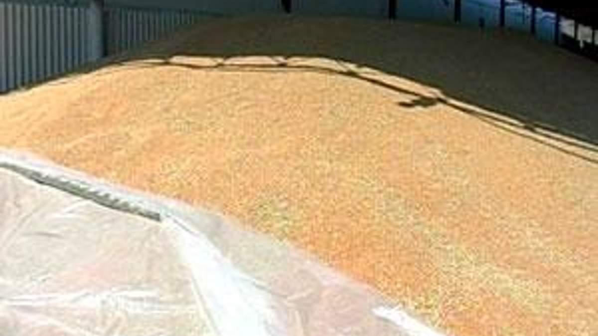 Порошенко: За низьку інфляцію держава має дякувати аграріям