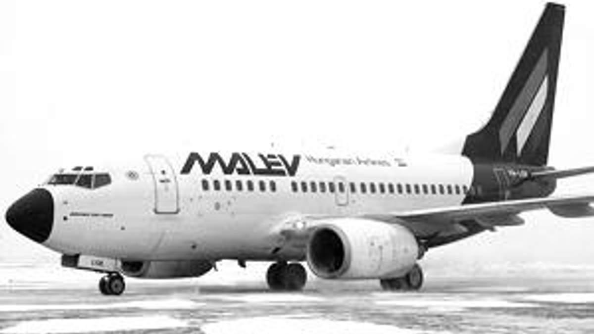 Национальный венгерский авиаперевозчик приостановил работу