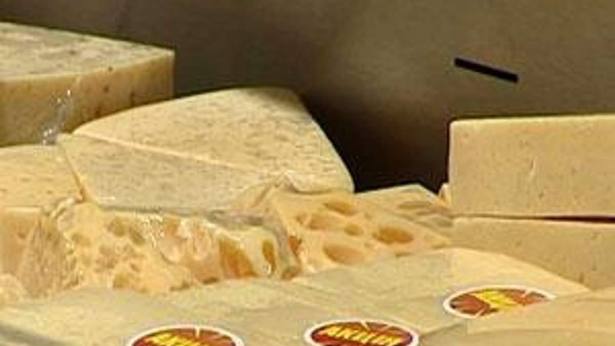 Украинскому сыру прогнозируют экспорт на рынок ЕС