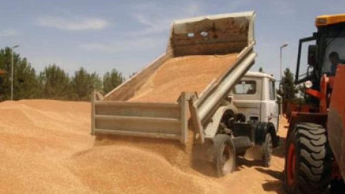 Іран готовий платити за російське зерно рублями