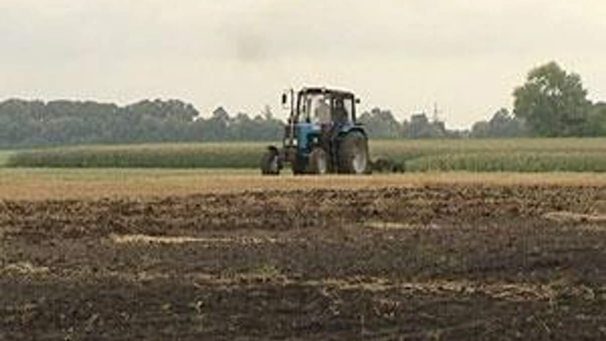 Вітчизняний агросектор потребує 75 млрд доларів інвестицій
