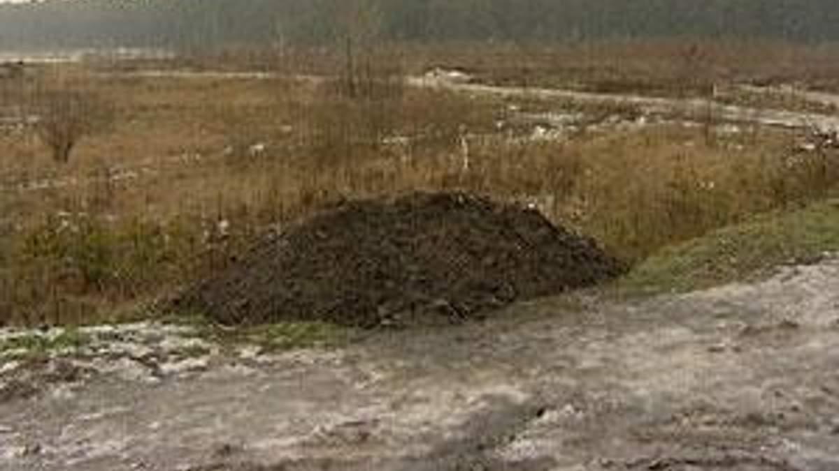 Держземагентство: Землю продаватимуть по 300 євро за га
