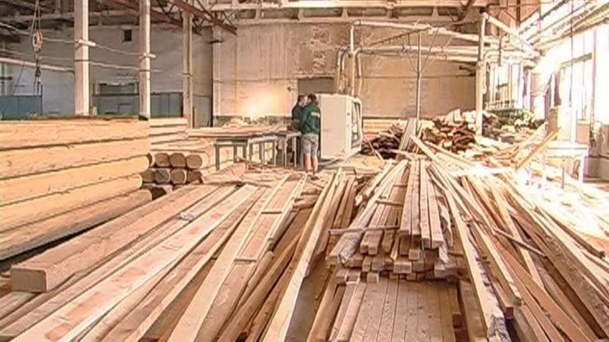 Іноземні інвестиції в лісове господарство України склали 0,02%