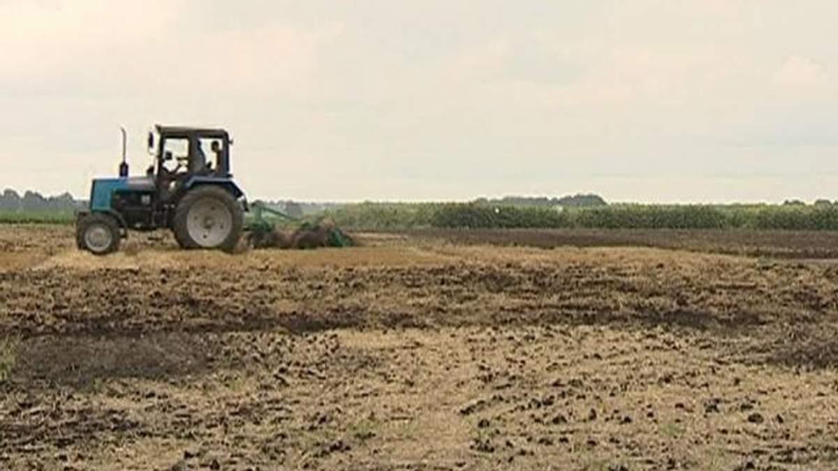 Земельний банк кредитуватиме аграріїв під 10% річних