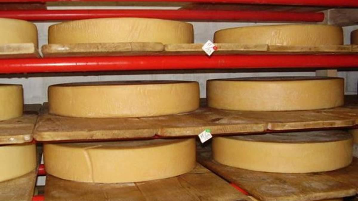 Россия вновь ограничила ввоз украинского сыра