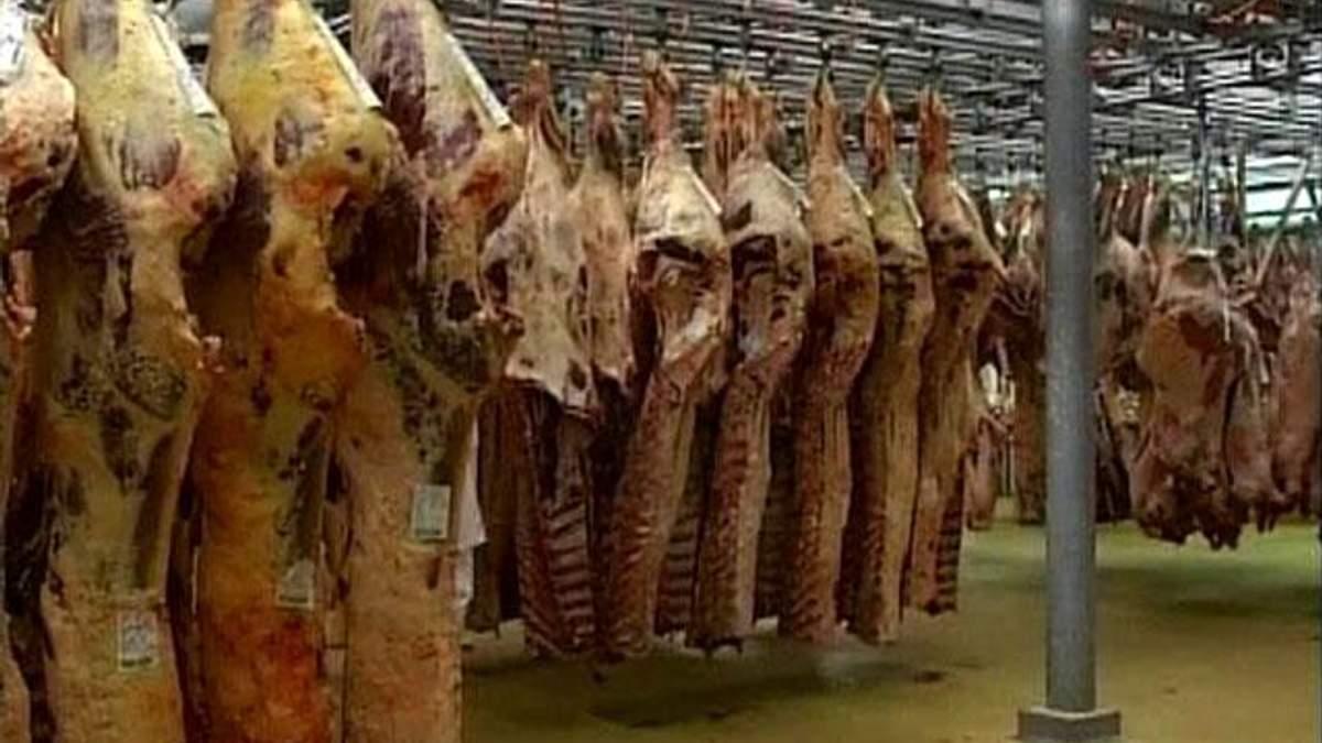 Свинина в Украине может подорожать на 15-25%