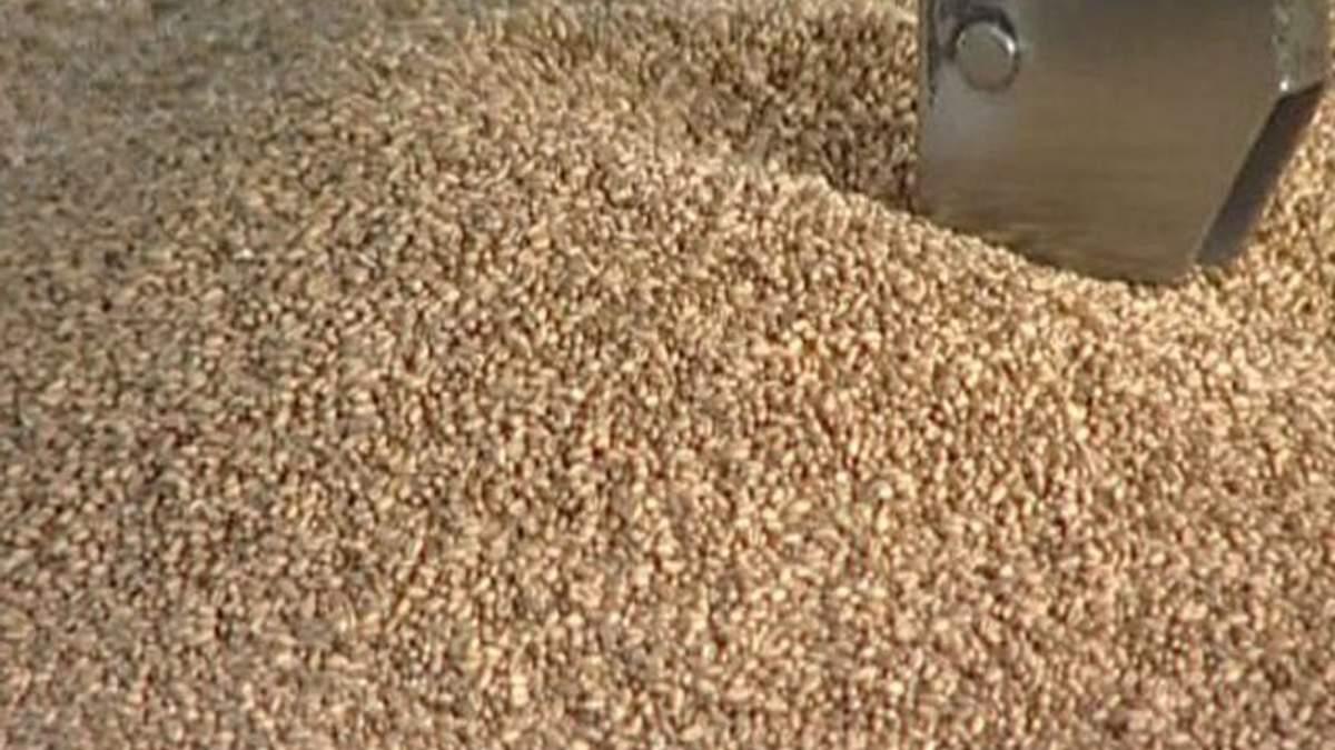 Уряд дозволив експортувати ще 1 млн тонн пшениці