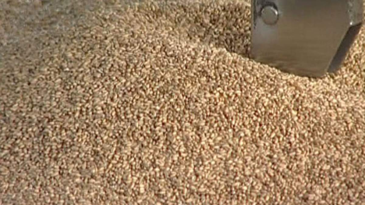Правительство разрешило экспортировать еще 1 млн тонн пшеницы