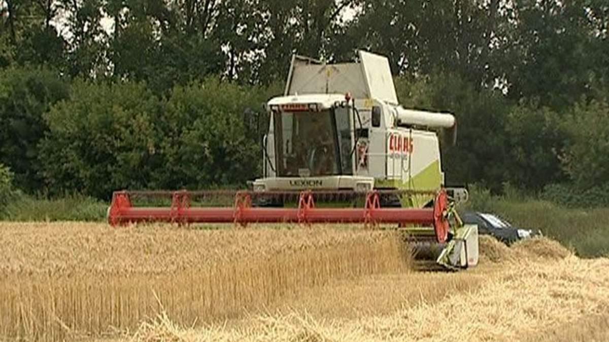 Украина и РФ договорились о новом формате зернового пула