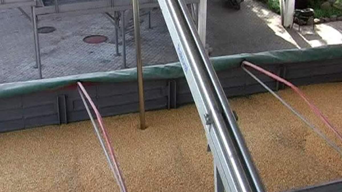 Російські експерти закликають СНД створити спільний зерновий резерв