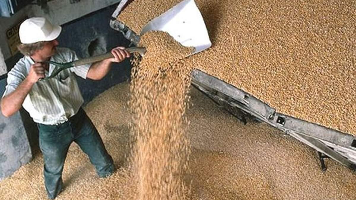 Україна припиняє експортувати пшеницю