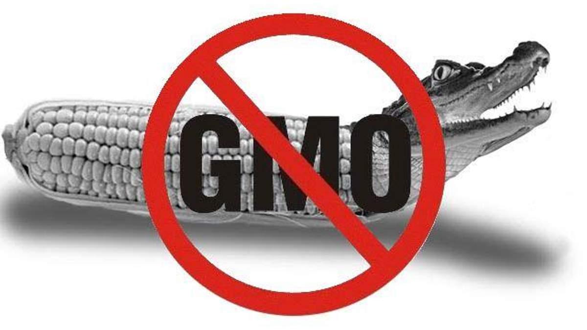 У МОЗі кажуть, що продуктів з ГМО в Україні немає