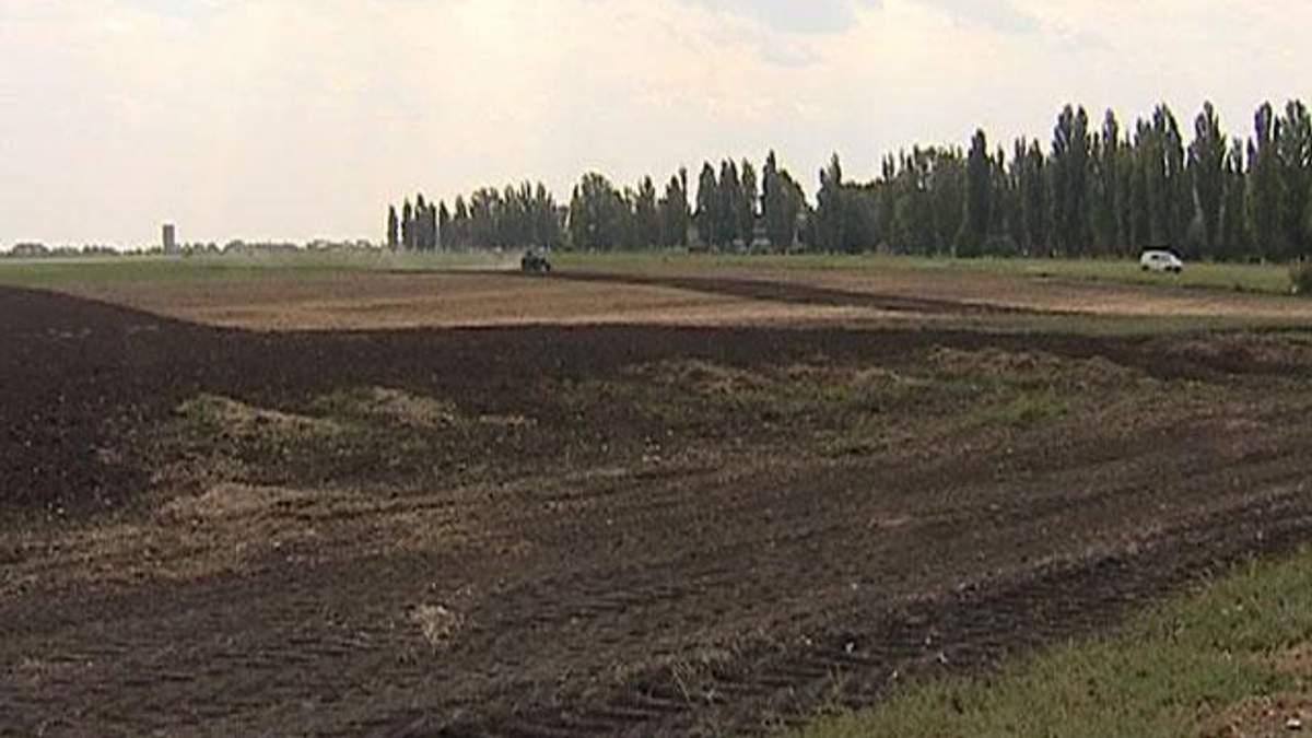 Експерти: Чергова відстрочка відкриття ринку землі зашкодить АПК
