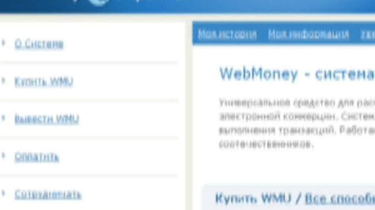 Миндоходов заблокировало на счетах Web Money 60 млн грн