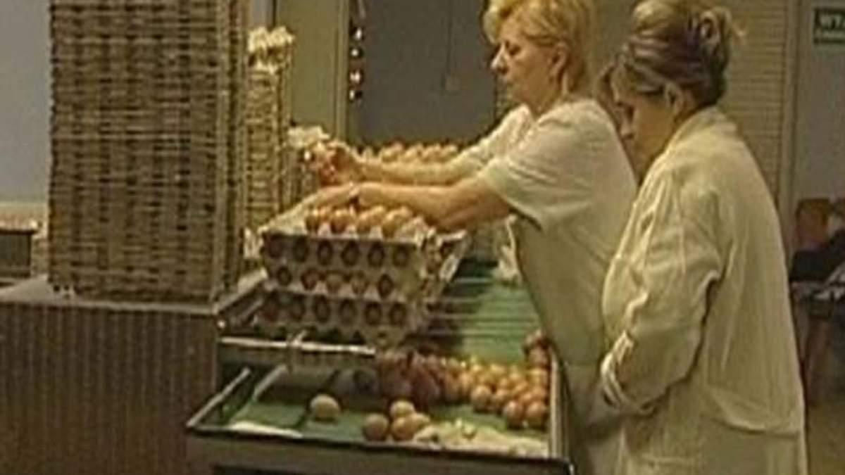 Через 15 лет украинские продукты может потреблять весь мир