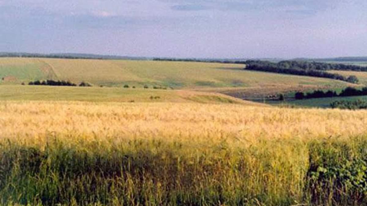 Україна ввійшла в десятку країн, де найпривабливіше купувати землю
