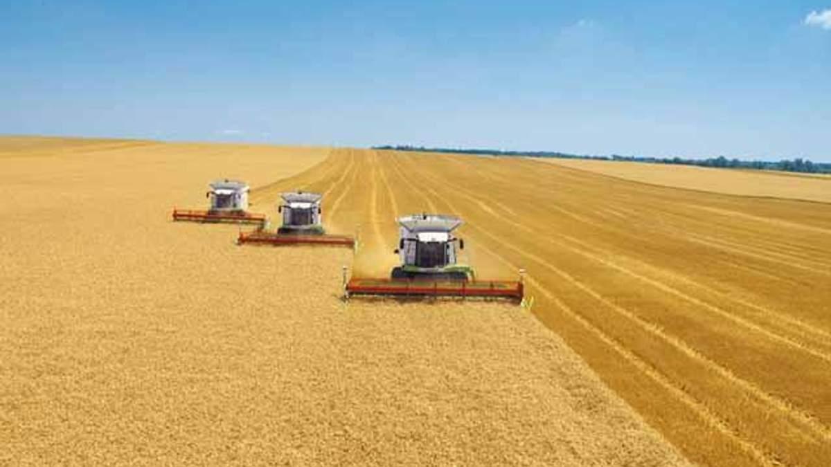 Реформа агросектора позволит нарастить ВВП Украины на 4,4%, - Всемирный банк