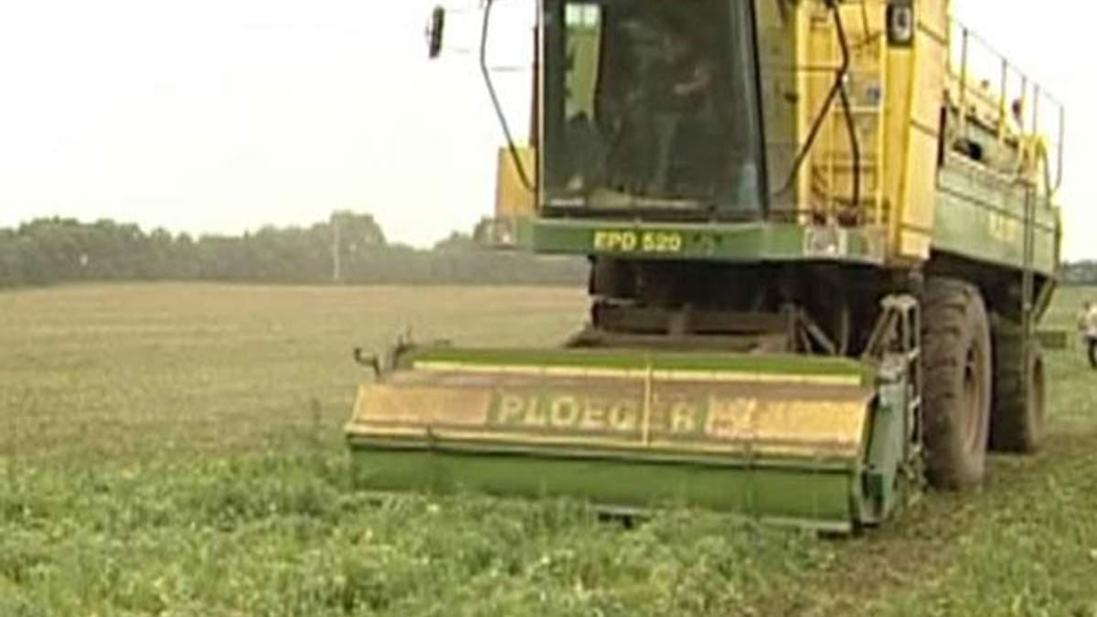 Специальный режим налогообложения в агросекторе будет действовать до 2016 года