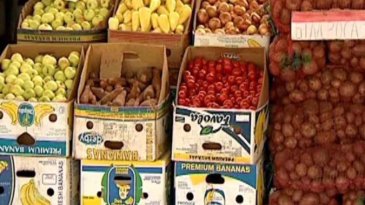 Из-за похолодания может пострадать урожай овощей