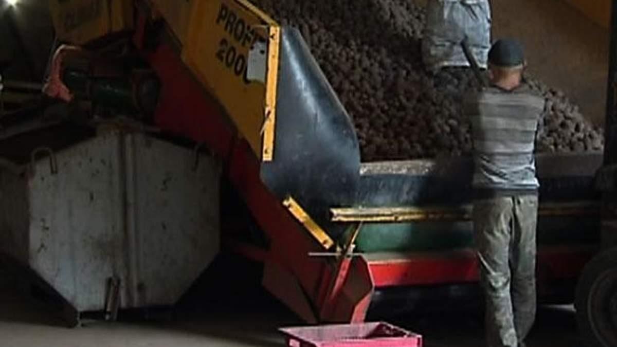 Украинские овощи не выдерживают ценовой конкуренции с импортом