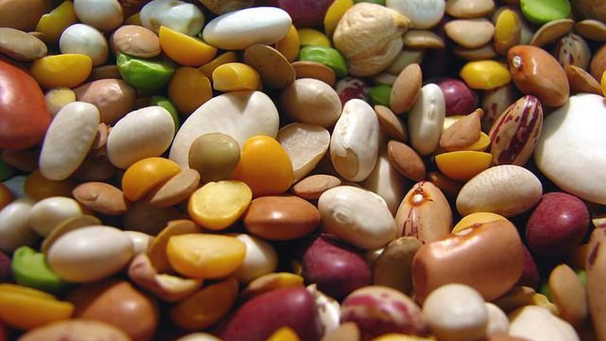 РФ обмежила ввезення українських соєвих бобів, соняшника та кукурудзяної крупи