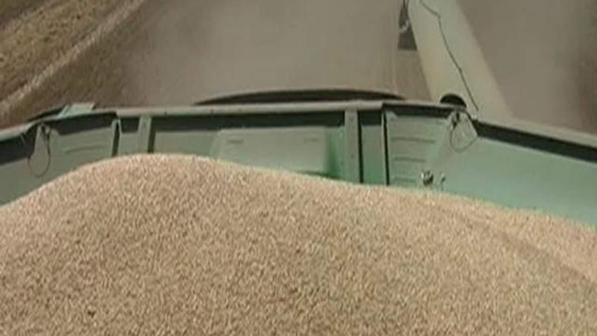 Аграрії уже зібрали понад 24 млн тонн зерна нового врожаю