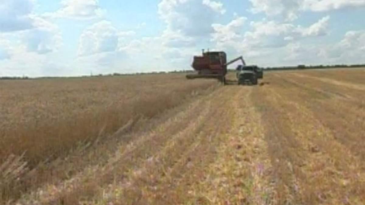 Україна цьогоріч збере майже 60 мільйонів тонн зерна