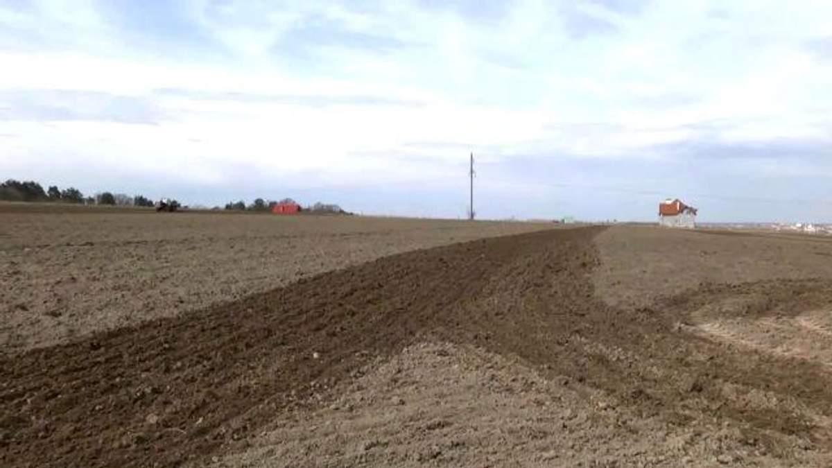 Из-за нехватки средств аграрии сократят посевные площади