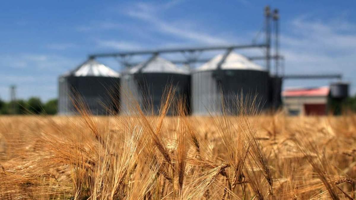 Агрохолдинг Бахматюка рекордно збільшив експорт зерна, – РБК