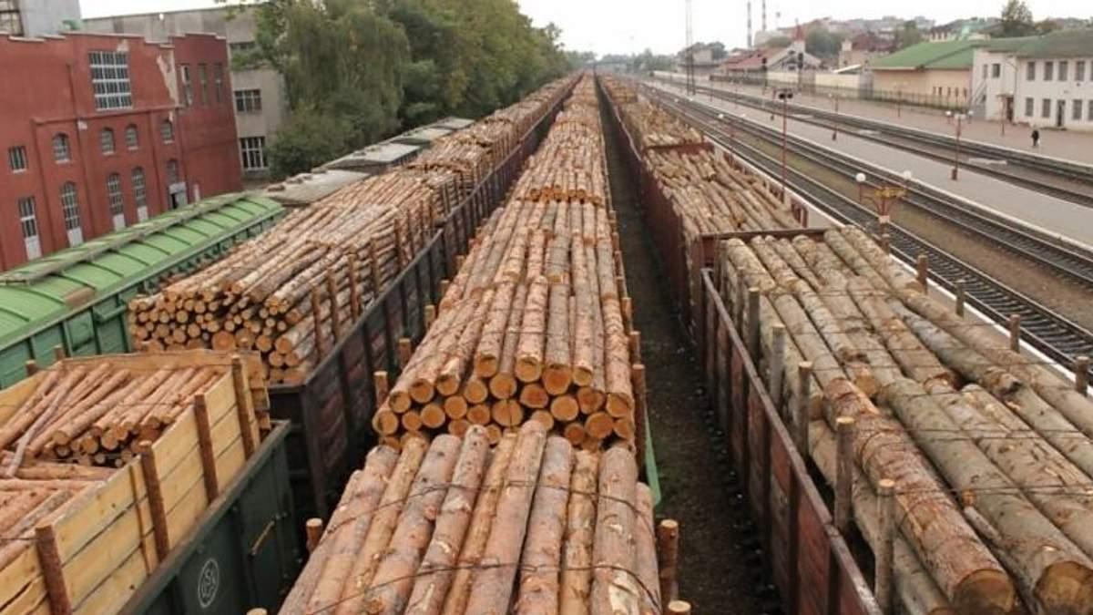 Луценко домігся скасування парламентом мораторію на вивезення лісу, – ЗМІ