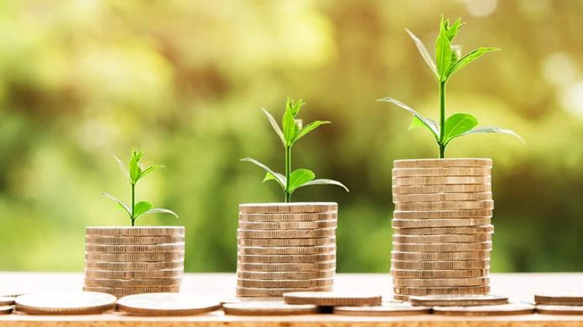 Куди інвестують гроші в Україні: головні сфери