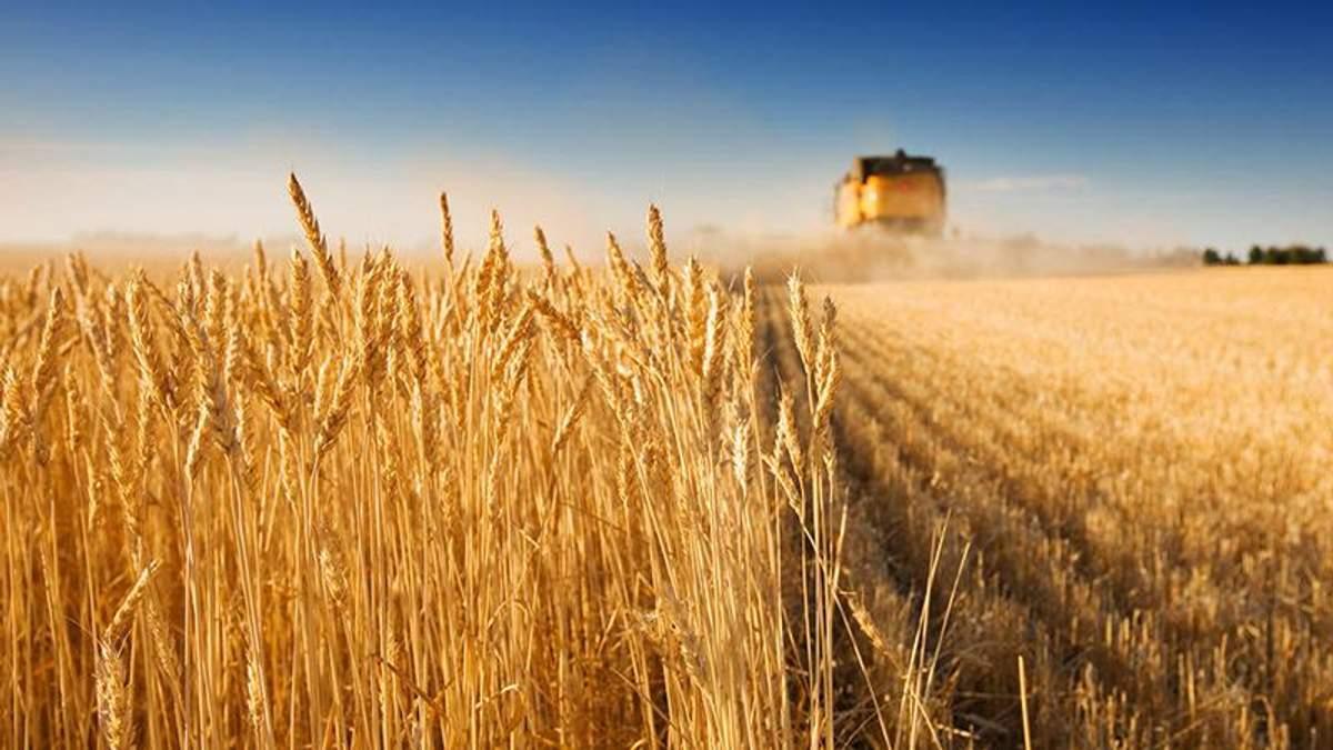 Як змінився український аграрний експорт у 2018 році: цікаві дані