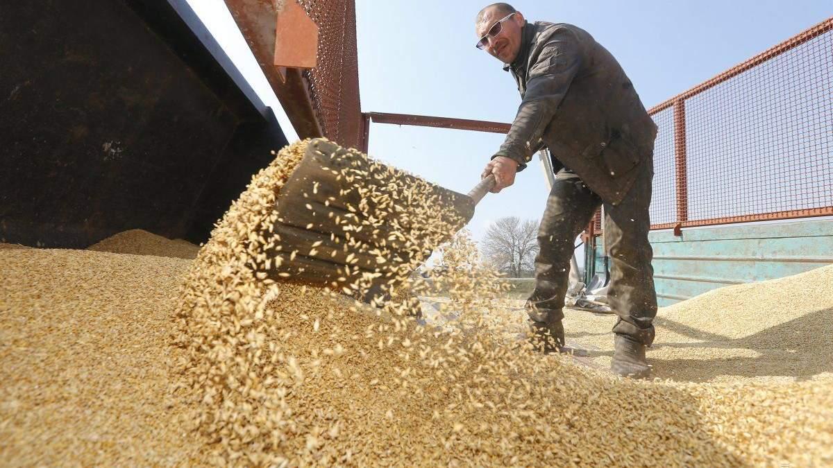 Запропонована УЗ індексація тарифів на вантажоперевезення негативно вплине на зерновий експорт