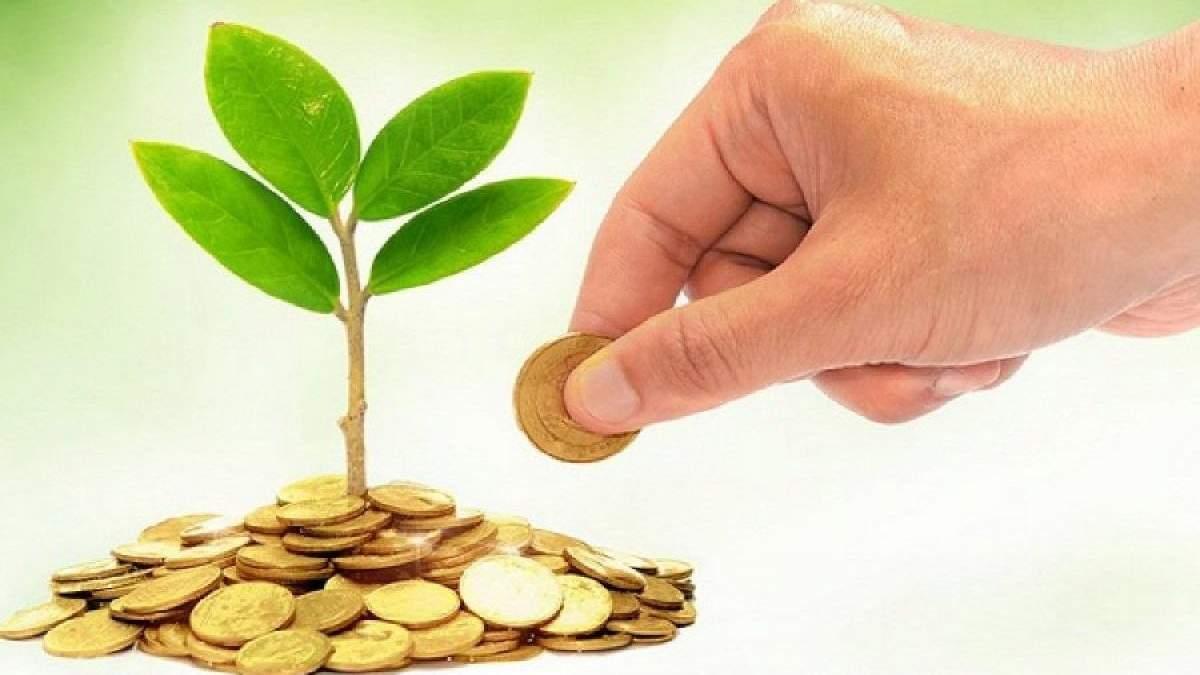 Гроші, які повинні йти на екологію, осідають в кишенях і витрачаються не за призначенням, – ЗМІ