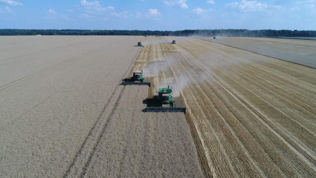 "В ""Укрлендфармінгу"" Бахматюка прогнозують високий урожай озимих зернових"