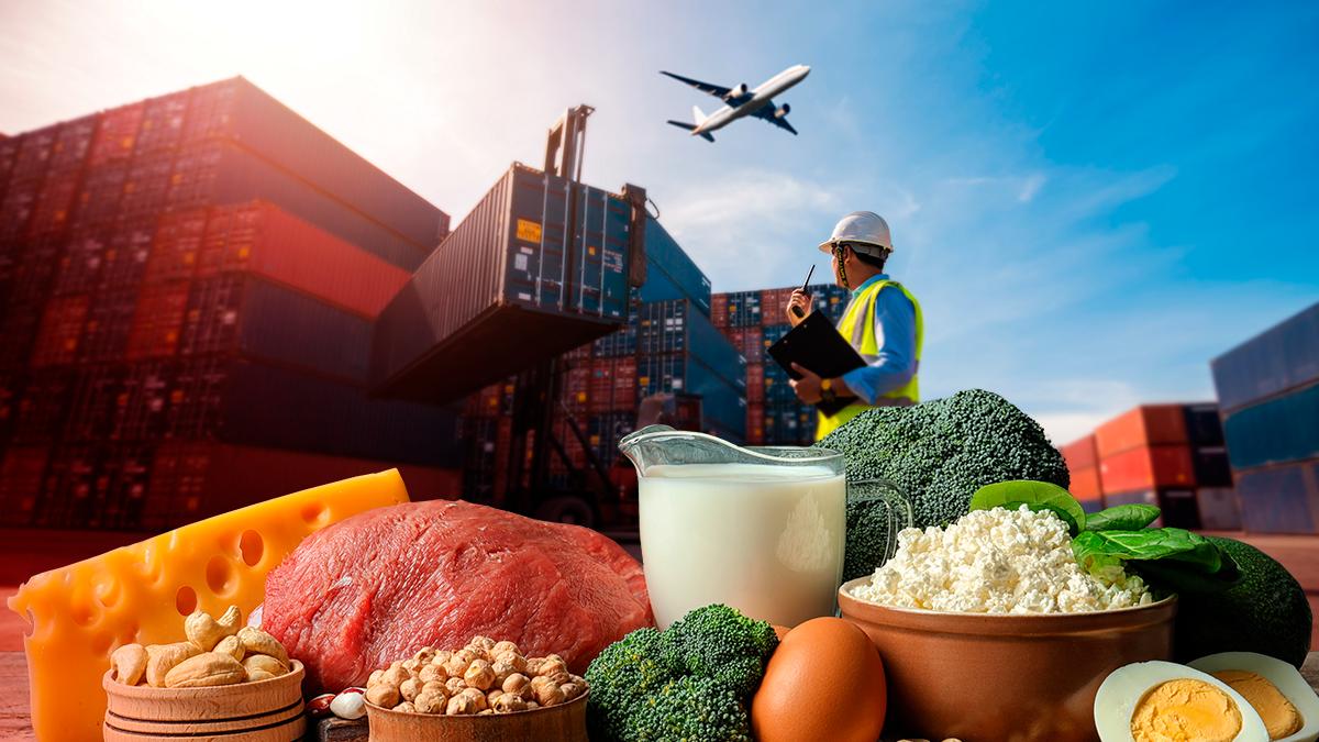 Які продукти Україна найбільше експортує: інфографіка