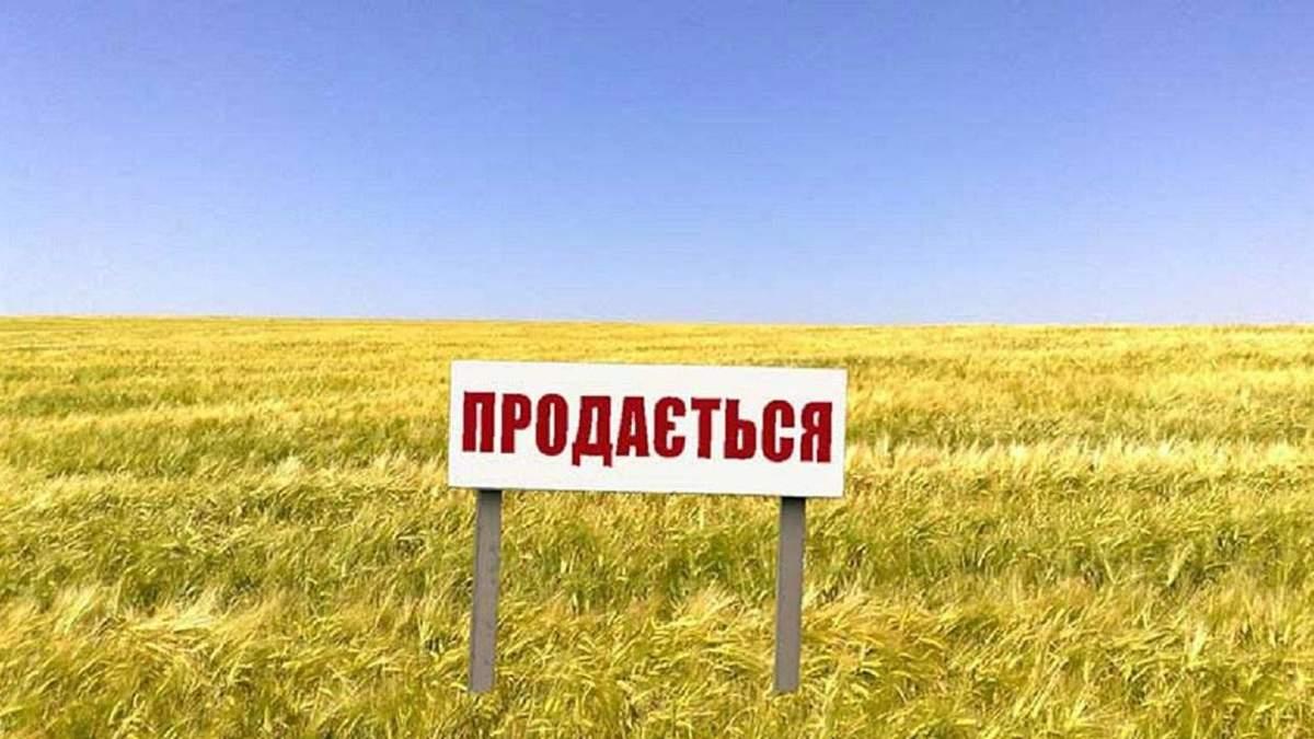 Продажа земли: каких изменений ждать украинцам - 9 серпня 2019 - 24 Канал