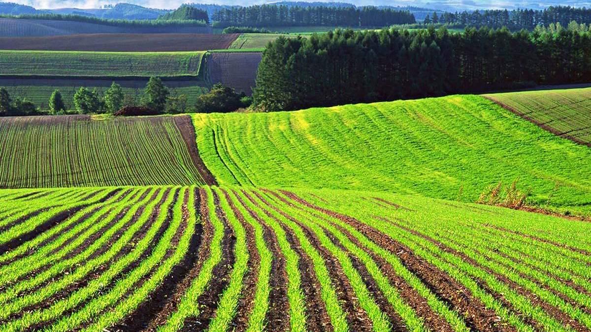 Запуск рынка земли – огромный прогресс