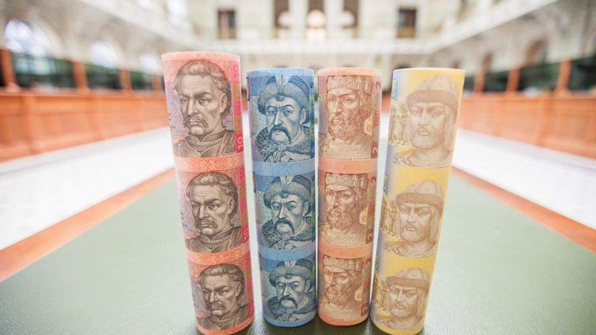 В уряді не мають наміру брати багато валютних запозичень
