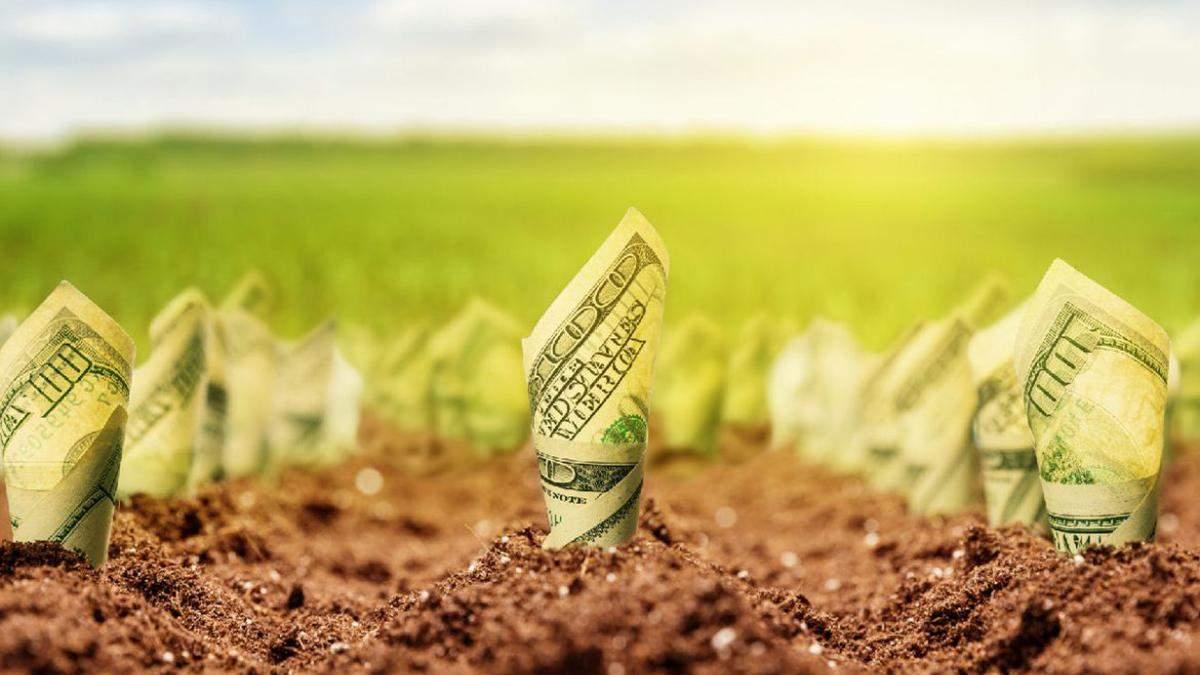 Комитет Рады наспех и втихую поддержал альтернативный законопроект о рынке земли