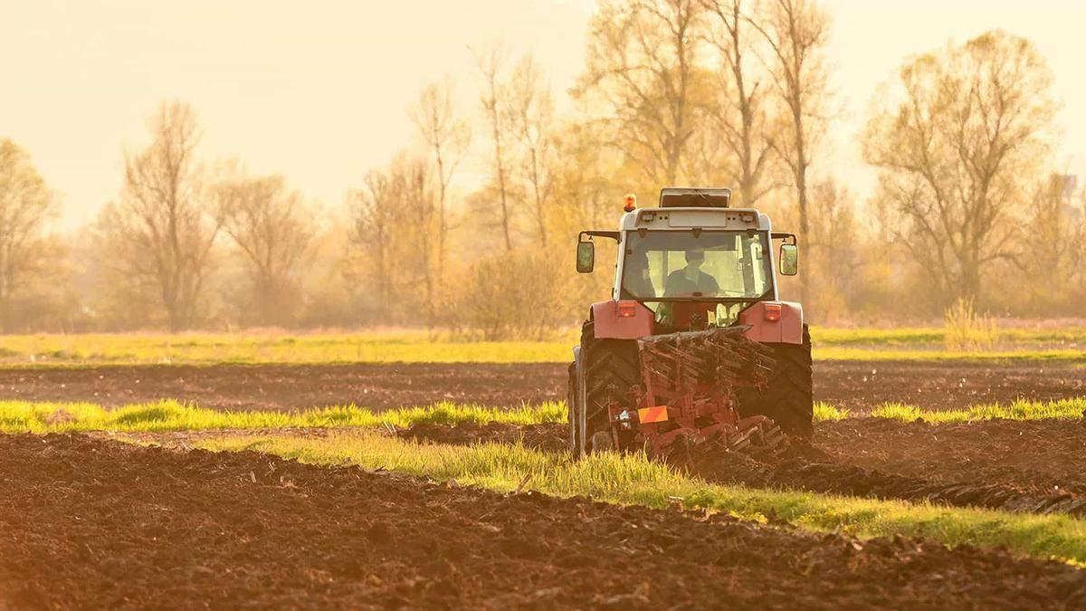 Висоцький назвав можливі ціни за гектар української землі