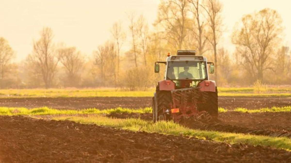 Высоцкий назвал возможные цены за гектар украинской земли