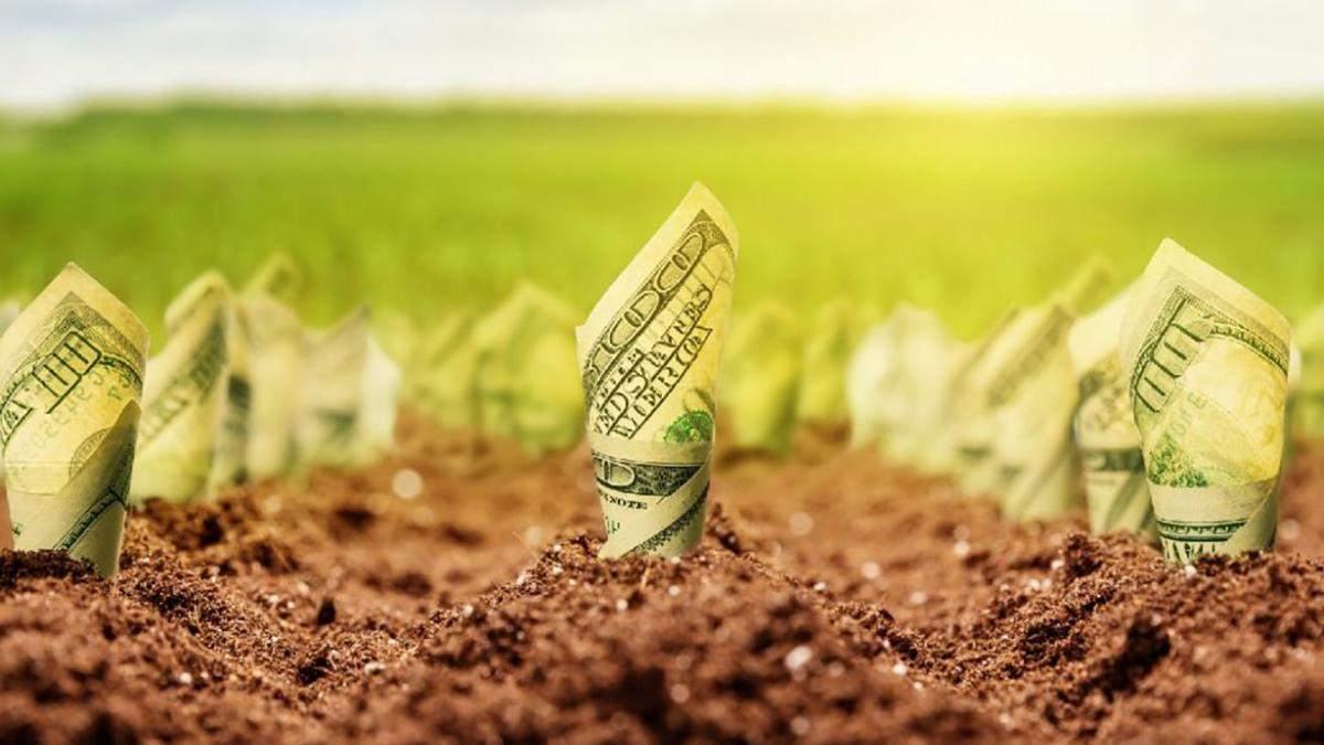 Законопроєкт №2178-10 про ринок землі 2020 підтримала Рада – деталі