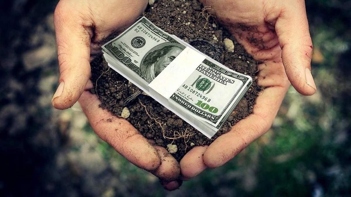 В Украине землю будут продавать через интернет: Рада сделала первый шаг