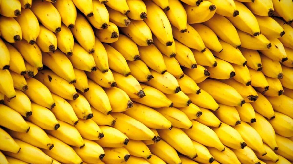 Украина в 2019 году установила рекорд импорта бананов