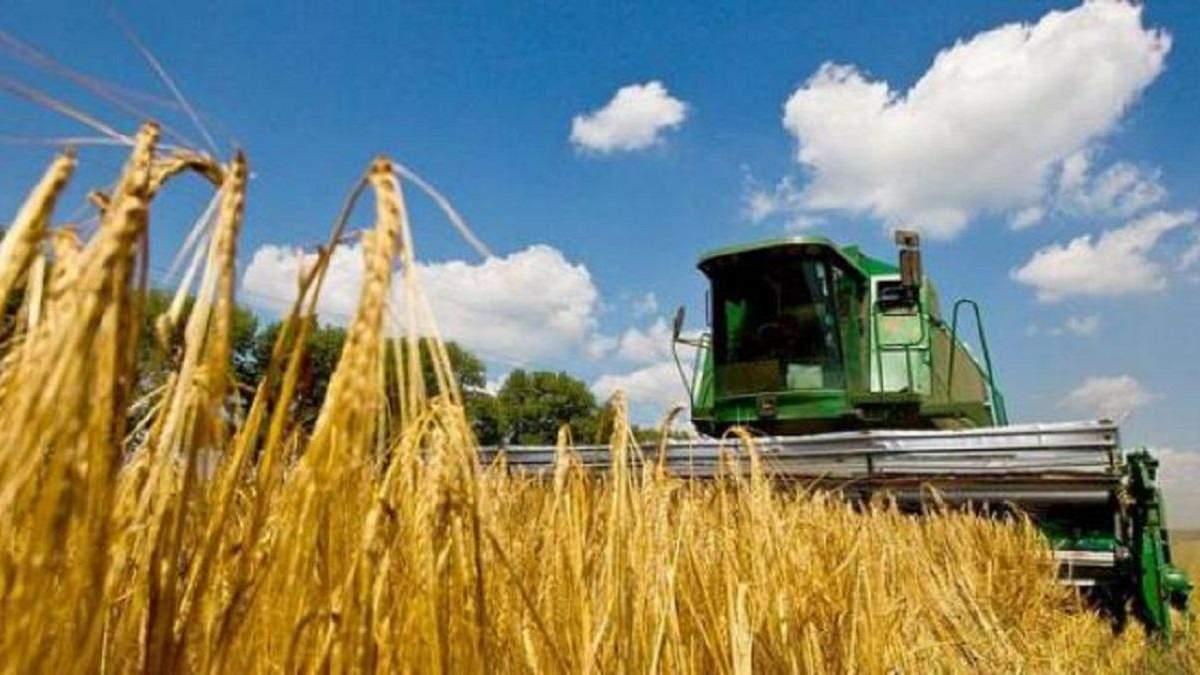 Украина – один из крупнейших экспортеров агропродукции в ЕС
