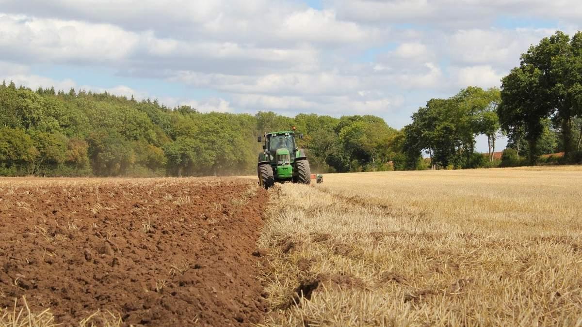 Рынок земли в Украине: землю можно будет покупать в безналичной форме